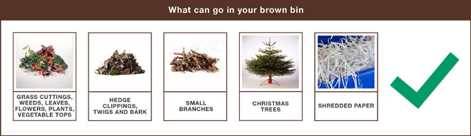 Brown bin items allowed image